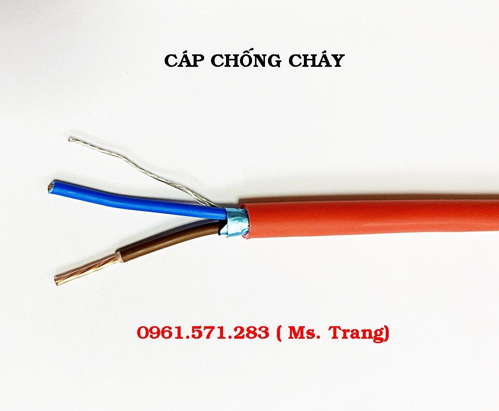 6a676e99dcf021ae78e1 (1).